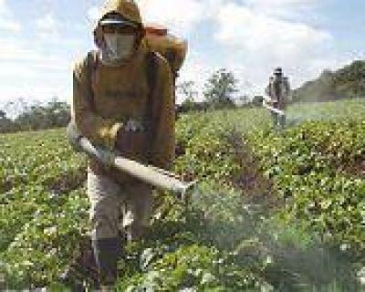 Amplían la investigación sobre el impacto de agroquímicos en salud y medio ambiente