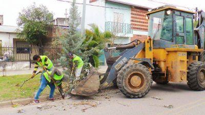La Municipalidad continúa con tareas integrales en la ciudad