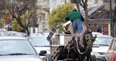 """Piden ayuda a la Nación para erradicar a los """"carreros"""""""