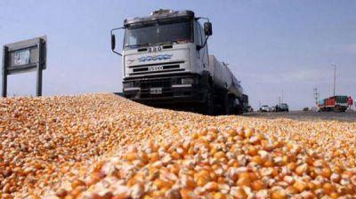 """Los acopiadores de cereales aseguran que """"sigue la Argentina del apriete"""""""