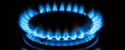 Importaban gas con un sobreprecio mayor a 30%