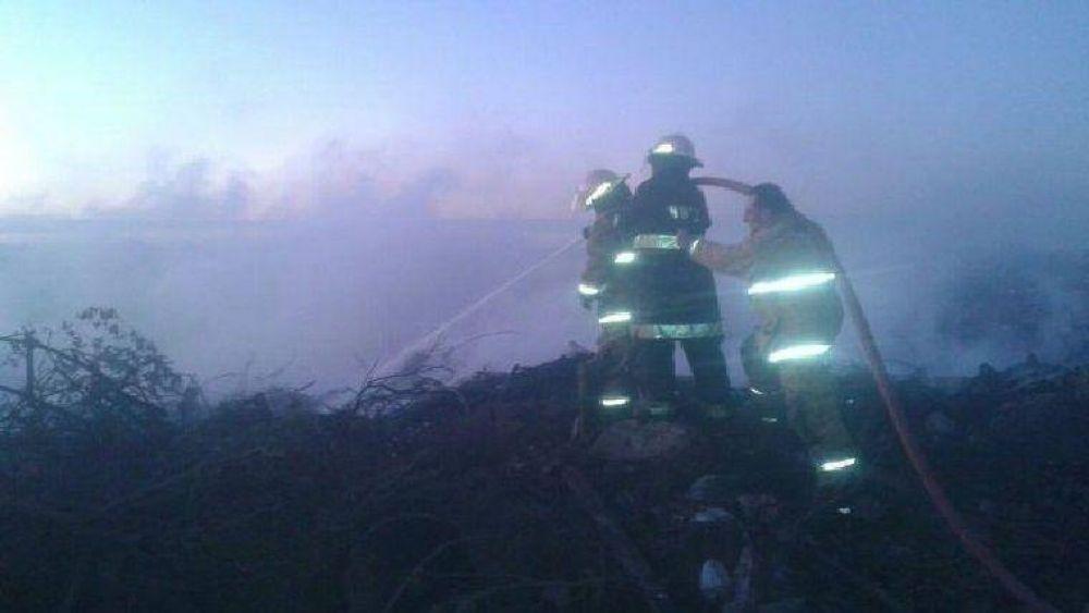 Muertes en autopista: Medio Ambiente denunciará al jefe comunal de Maciel