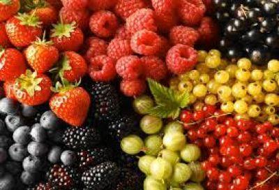 Fruta fina: alerta en El Hoyo por la apertura de las importaciones