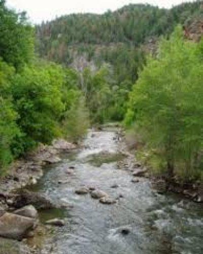 Se presenta una propuesta ambientalista referida a los Arroyos de Entre Ríos