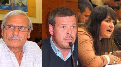 Concejales marplatenses del FpV se reunirán con Cristina