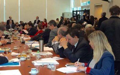 Reforma política: el FpV propone cupo de género igualitario
