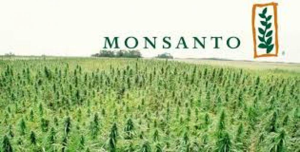 La resistencia social obligó a Monsanto a abandonar su proyecto de Córdoba