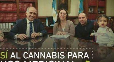 Cannabis para uso medicinal: se suman las voces a favor