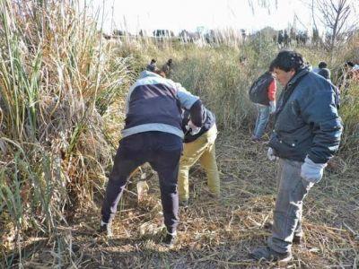 Continúa la producción de cortaderas para la forestación de la Cuenca del Morro