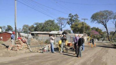 Rechazaron el amparo contra la tala de �rboles
