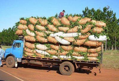 Yerba: La sesión de precios continuará el próximo jueves