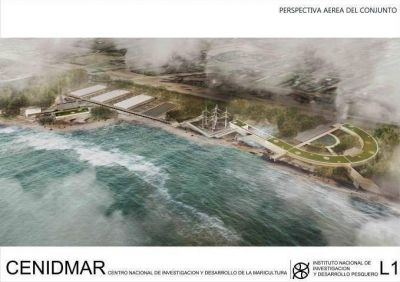 INIDEP aclaró que proyecto de Maricultura traerá mejoras a la zona