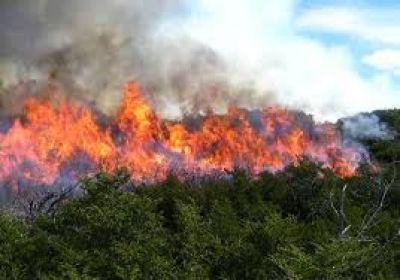 Medio Ambiente brind� una capacitaci�n para evitar incendios en acopios