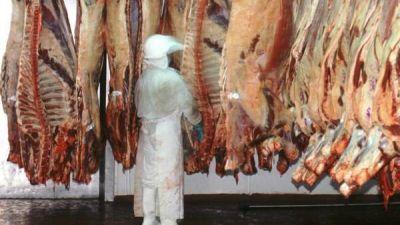 Vuelven a advertir que la carne subirá un 5%