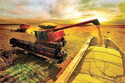 Evalúan pérdidas de granos por retrasos en la cosecha gruesa en el sudeste bonaerense