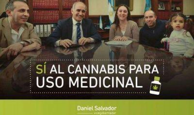 El vicegobernador bonaerense avaló el Cannabis medicinal para legalizarlo en la Provincia