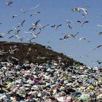 Menos del 10% de los grandes generadores de residuos informa d�nde los deposita