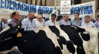 Ahora tamberos y porcinos quieren protestar con vacas y cerdos en Plaza de Mayo