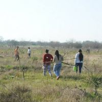 M�s de 300 familias tomaron tierras en Moreno, a la vera de la Ruta 25