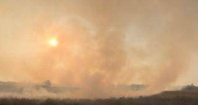 La quema de ca�a, una pr�ctica ilegal que no para en Tucum�n