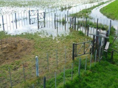 La Provincia reclamó a la Nación 900 millones de pesos para obras en el Rio V