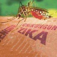Con el fin del invierno cerca, llaman a prevenir el dengue y el zika