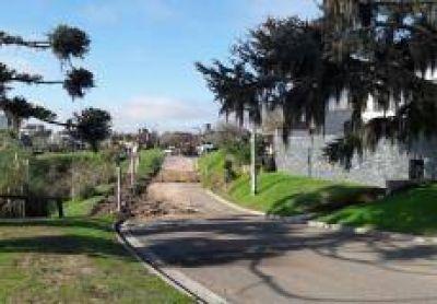 Reparan el nuevo Boulevard para evitar filtraciones y deterioro en calle Per�n