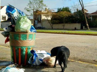 Advierten que habrá multas para quienes saquen la basura los días sin recolección