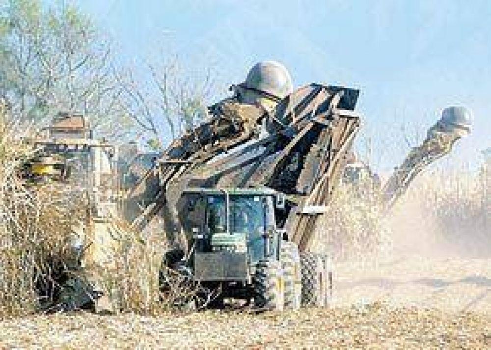 Ingenios azucareros apuntan a llenar el tanque de los autos
