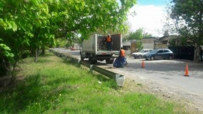 Sacaron más de 20 toneladas de basura de la avenida Circunvalación