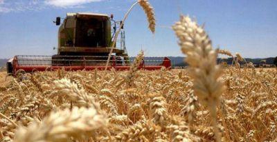 La Pampa exportó 241 millones de dólares en el primer semestre