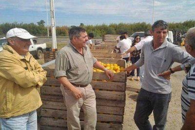 Titular de la Federación del Citrus: