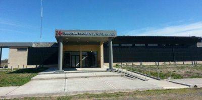 Se inaugura hoy en Choele Choel el Hospital Escuela de Veterinaria de la UNRN