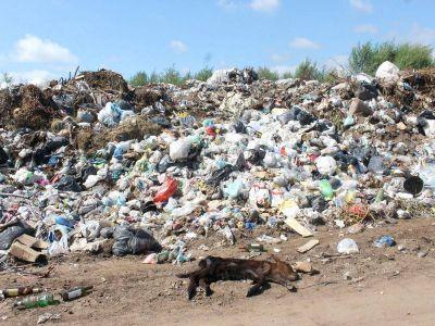 El OPDS se encargará de tapar y sanear el basural a cielo abierto