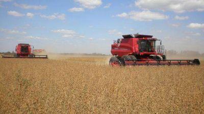 La mitad de la producción agraria entrerriana es soja