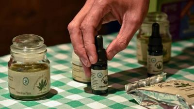 Chubut promulgó la ley para que hospitales garanticen la marihuana medicinal
