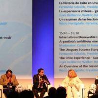 Mendoza se posiciona en el mercado de energ�as renovables