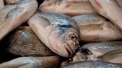 El miércoles, como protesta, regalarán pescado en el Puerto