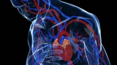 C�mo tener un coraz�n saludable con peque�os cambios de h�bito