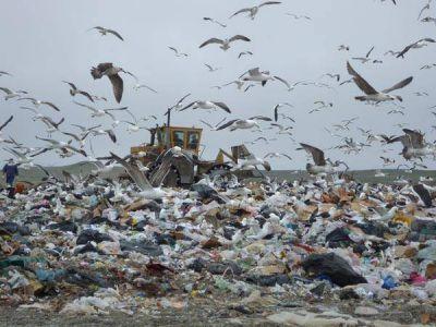 Concejales trabajaron sobre el pliego de disposición final de residuos
