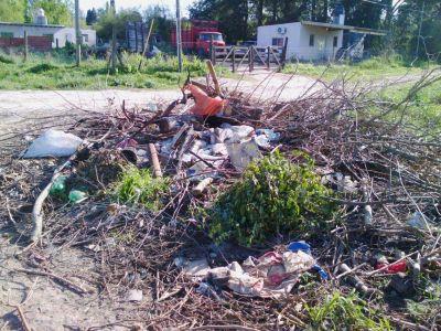 Formaci�n de basural en el Parque Lasa