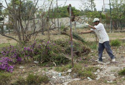 La basura complica la vida de los vecinos de Ciudad del Milagro