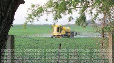 Agroquímicos: cada vez más municipios de la Provincia buscan regular su uso