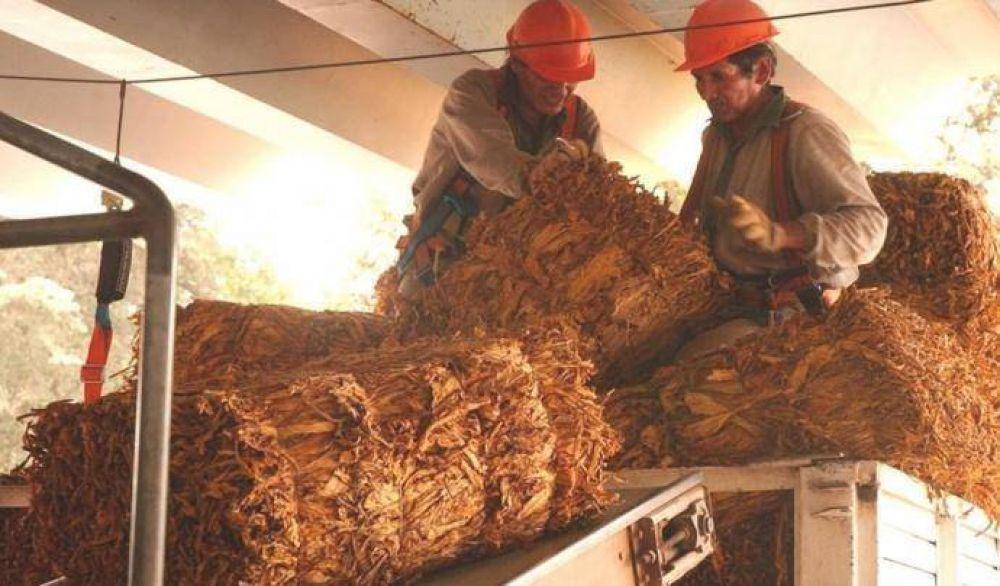 Despiden a más de 500 trabajadores de la industria del tabaco
