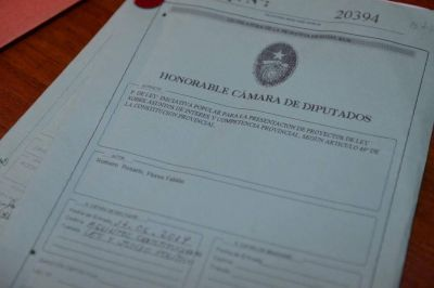 Diputados dio dictamen al proyecto de ley de iniciativa legislativa popular