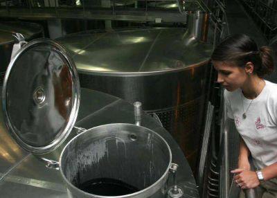 INV regula el ingreso de vino importados