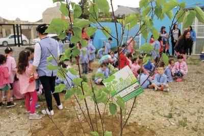Rada Tilly trabaja sobre separación de residuos con las escuelas