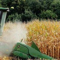 En C�rdoba, la cosecha tendr� menos soja y m�s ma�z