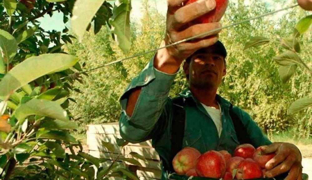 Mesa Sindical se declara en alerta por los despidos de los trabajadores de la fruta