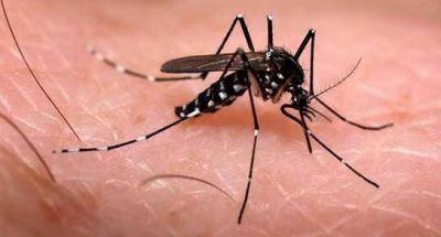 Realizan taller de prevenci�n de Dengue, Zika y Chikungunya